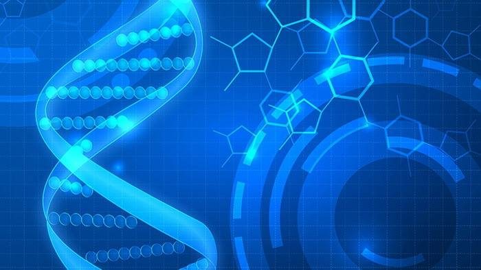 趣味科学实验视频_2019科学与艺术教育国际论坛系列活动方案 – 科学同盟网